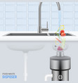 sink with food waste disposer vector image