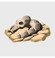Skeleton of an ancient animal on the stone vector image