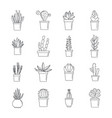 succulent and cactus icons set outline style vector image vector image