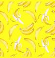 Watercolor banana pattern vector image