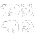 black line bears on white background hand drawn vector image vector image