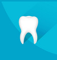 tooth symbol with background vector image vector image