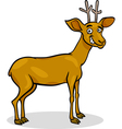 wild deer cartoon vector image