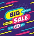 big sale shop now - concept banner vector image vector image
