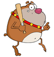 Brown Bulldog Tip Toeing With Baseball Bat vector image vector image