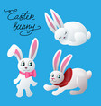 bunny isolated vector image