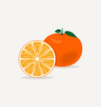 citrus mandarin flat icon vector image