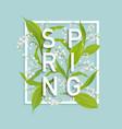 floral spring design template card sale banner vector image