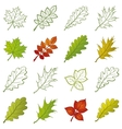 Leaves of plants and pictograms set vector image vector image