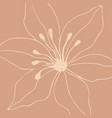 minimalism card floral art design vector image