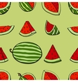 pattern watermelon vector image