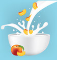peach slice in milk splash vector image vector image