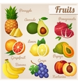 set food icons fruits vector image vector image