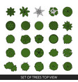 set of trees top view vector image vector image