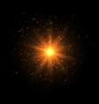 the golden blazing star vector image vector image