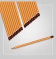 a set yellow pencils various hardness vector image vector image