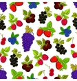 Berries and fruits seamless background vector image