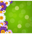 Colorful Gerbers Flowers Frame With Green Bokeh vector image vector image