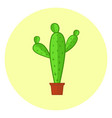 cute colorful cacti icon bright cactus in a pot vector image vector image