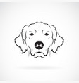 dog head golden rretriever on a white background vector image vector image