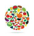 fruit and vegetable circle vector image vector image