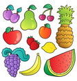fruits images collection vector image
