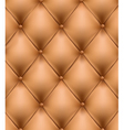 genuine leather vector image vector image