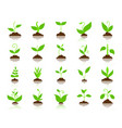 grass simple flat color icons set vector image vector image