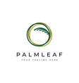 green palm leaf logo design vector image vector image