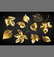set golden leaves vector image vector image