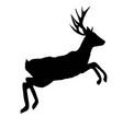 silhouette deer with great antleranimal vector image