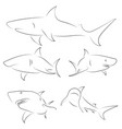 black line sharks on white background hand drawn vector image vector image