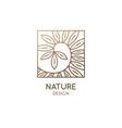 costus afer spiral ginger linear logo ornamental vector image vector image