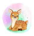 cute sweet watercolor fawn vector image