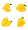 mango whole fruit slices vector image vector image