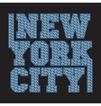 New York typography design graphic vector image vector image