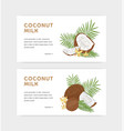 bundle web banner templates for coconut milk vector image vector image
