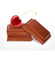 cherry with chocolate pieces vector image vector image