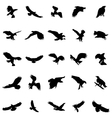 Flying birds silhouettes set vector image