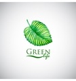 Green life watercolor leaf like logo icon vector image