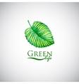 Green life watercolor leaf like logo icon