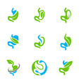 set of stomach with leaf logo design concept vector image vector image