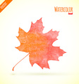 Watercolor leaf vector image vector image