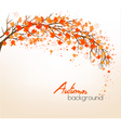 Beautiful autumn nature background with trees vector image vector image
