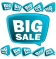 Big Sale tags EPS8 vector image