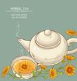 calendula tea background vector image vector image