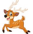 cartoon baby deer running vector image vector image