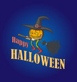 character of pumpkin witch on broom vector image