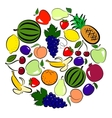 Fruits circle vector image vector image
