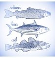 Graphic fish collection vector image